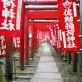 The Path to Sasukeinarijinja